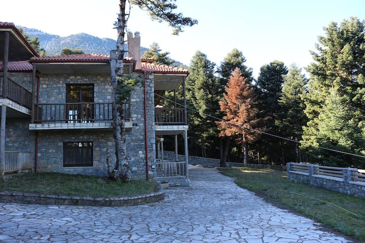 Traditional Guest Houses .. - Kardaras - Villa