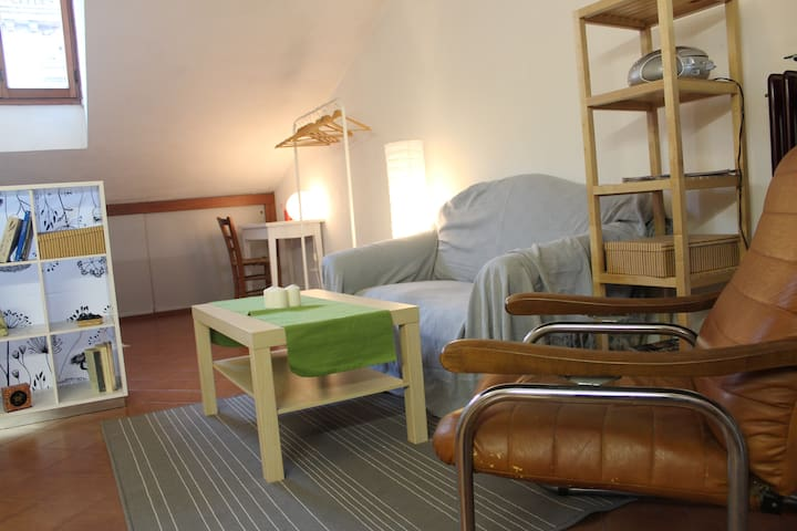 Lovely attic in the heart of old town - Padova - Appartement