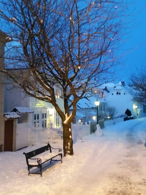 The street wintertime.