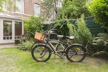 The bikes to cruise around with