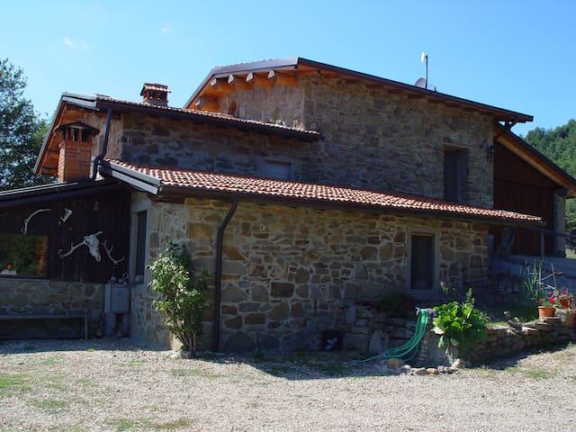 Rifugio del Lupo - Chiusi della Verna - Wikt i opierunek