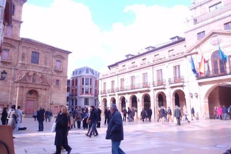 Junto Ayuntamiento,Catedral y WIFFI