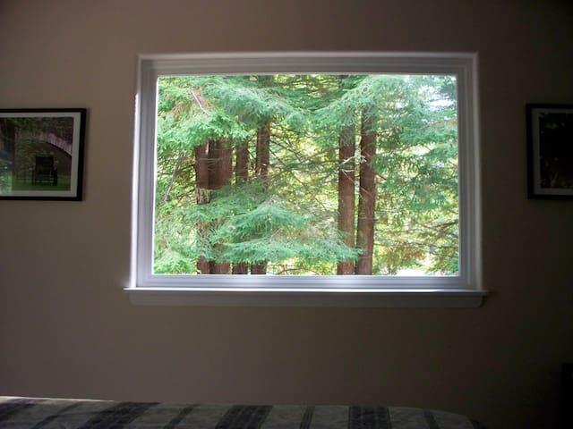 Scenic Redwoods NorCal Getaway - Eureka