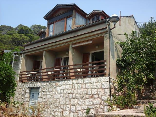 2 bedroom apartment in NP Mljet - Mljet - House