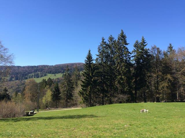 Idyllisch und ruhig gelegenes Chalet - Vauffelin - Dom