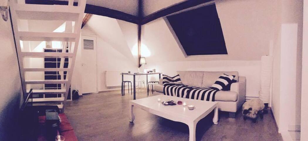 Chill appartment - Etterbeek - Wohnung