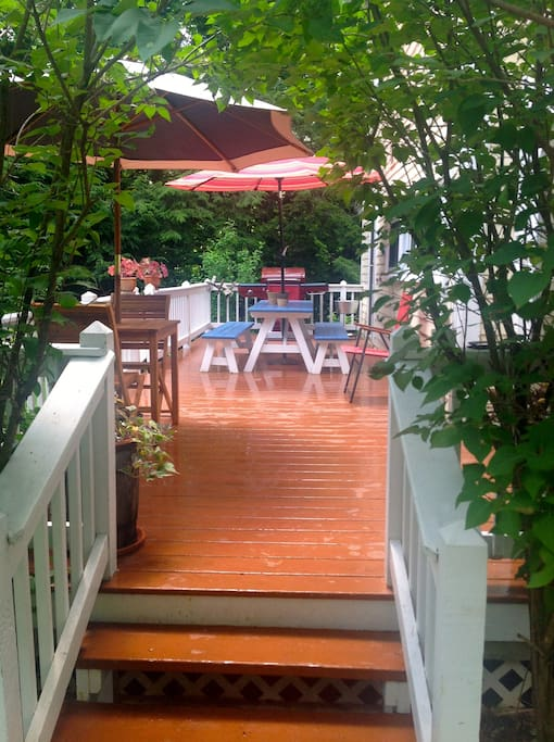 Our favorite summer spot - the deck!