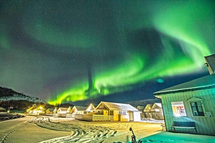 Aurora borealis over Arctic Seasport