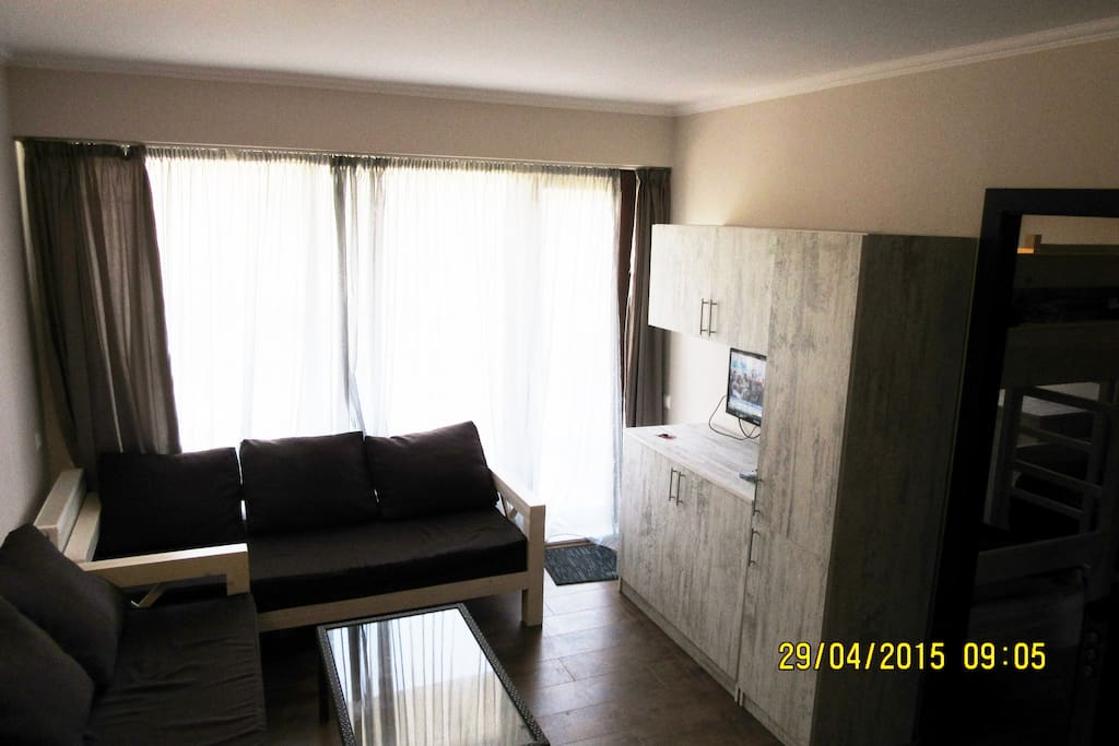 Living room with 2 sofas