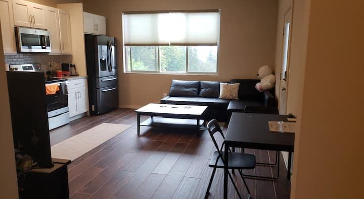 位于西雅图南部的带洗衣和全厨房的私人新套房