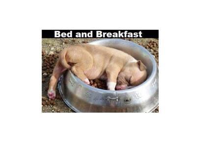 B&b4Pi - Girasole - Bed & Breakfast