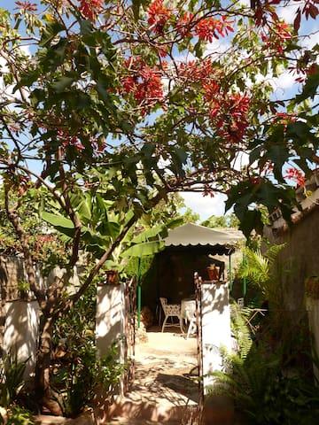 Moros y Cristianos - Trinidad - Haus