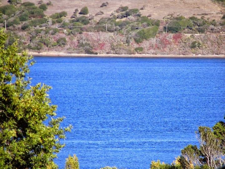 Sunny retreat, near trails and beaches