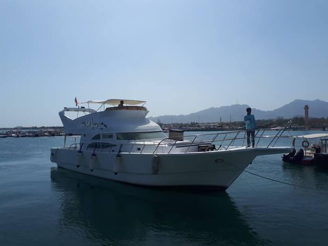 Yacht in Dibba Fujairah