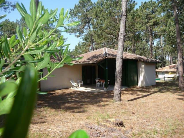 Villa dans les Pins proche Océan - Moliets-et-Maa - House