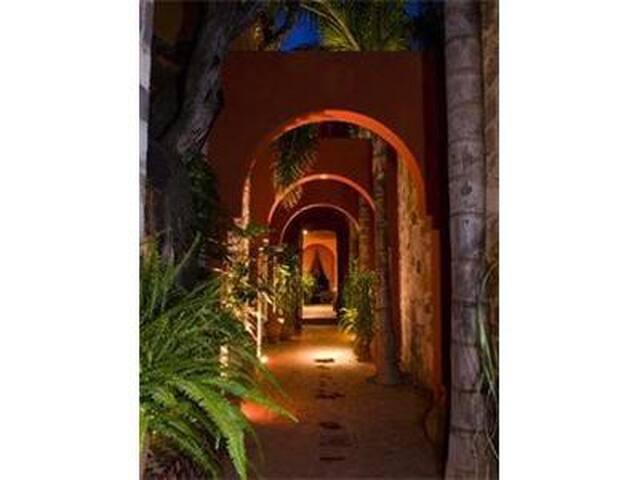 Private Suite in Casa Lita - San Miguel de Allende - House