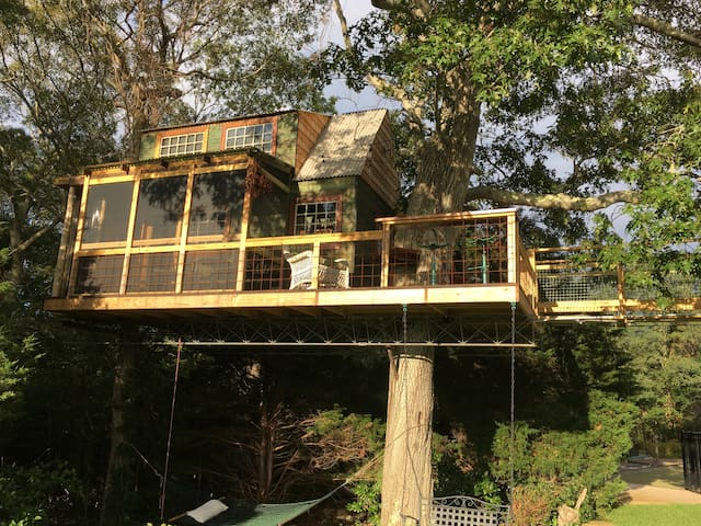 Millennial GenerationTreehouse - Plymouth - Treehouse