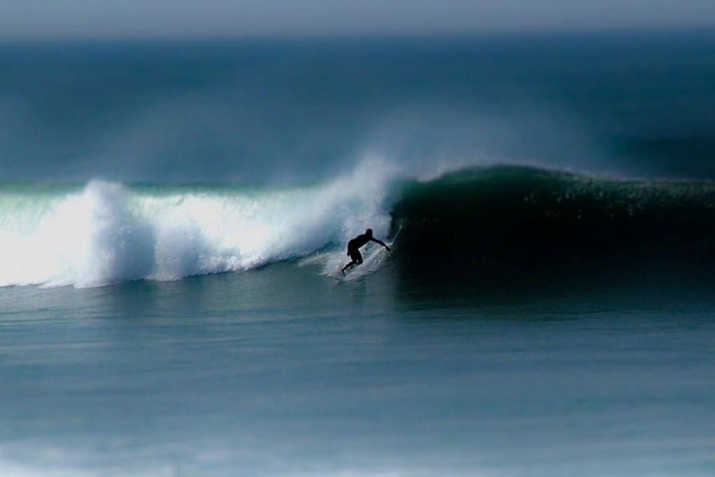 Surfing on your doorstep