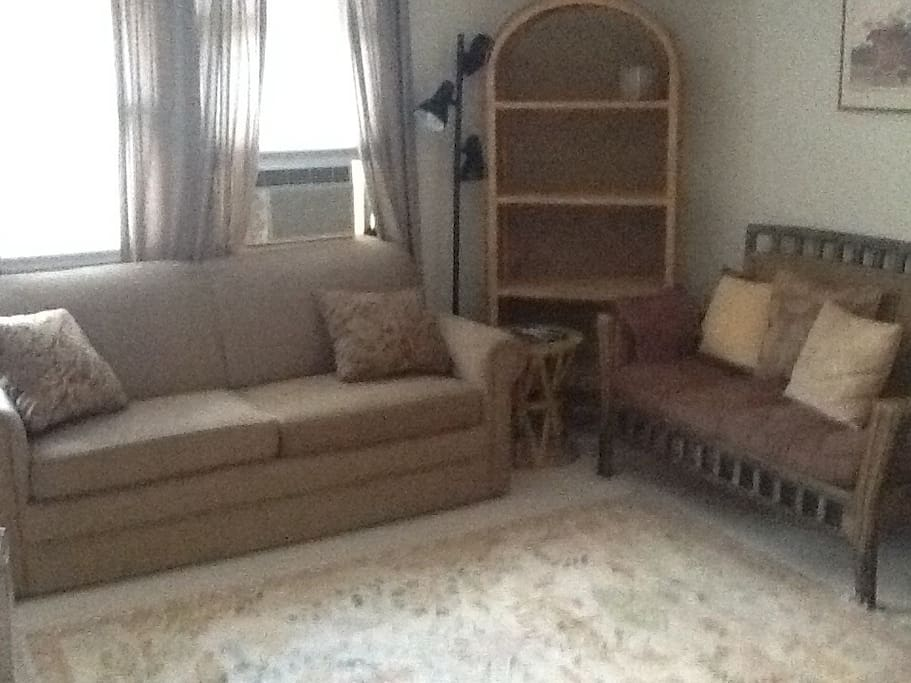 Living room area with Pull out sleeper
