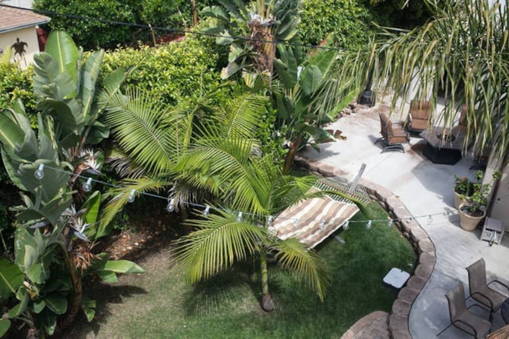 This is a bird's eye view of the back yard from the roof. Don't worry, we have a spiral staircase that leads to a roof top patio.