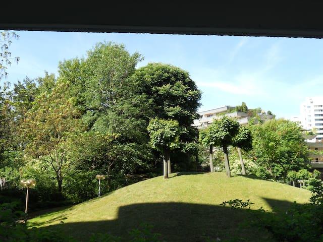 Blick in den Park