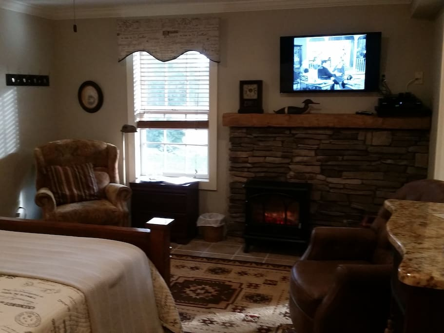 Queen bed, elec fireplace, 2 person Jacuzzi and shower, private  entrance, frig & micro