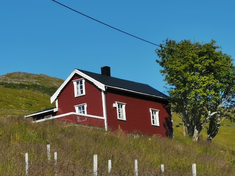 Hytte på fjellet midt i Lofoten