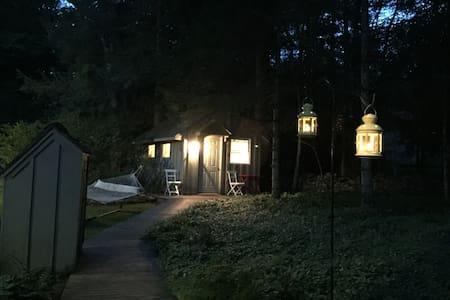 Woodstock Tiny House:  semi-rustic, heat, internet - Woodstock