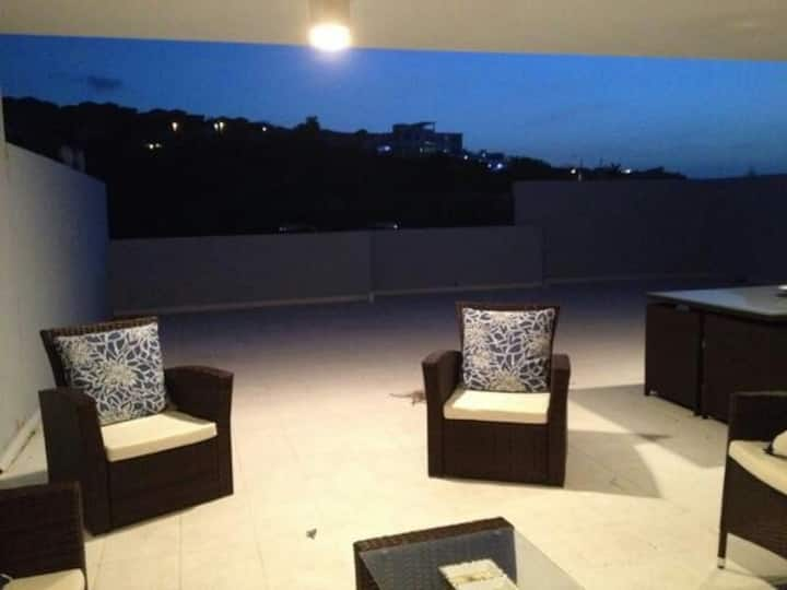 PH w furnitures roof deck & BBQ pool open by appt.