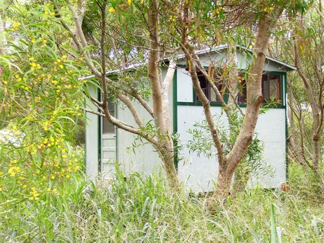 Sweet Secluded Cabin in the Woods - Hawi - Cabaña