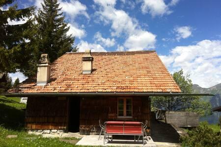 Gemütliche, rustikale Alphütte - Brienz - Alpehytte