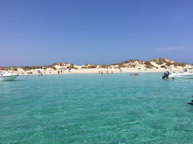 Joli studio vue mer - Formentera  - Huoneisto