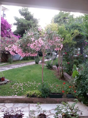 Glyfada beach&beautiful garden house.R:00000279230