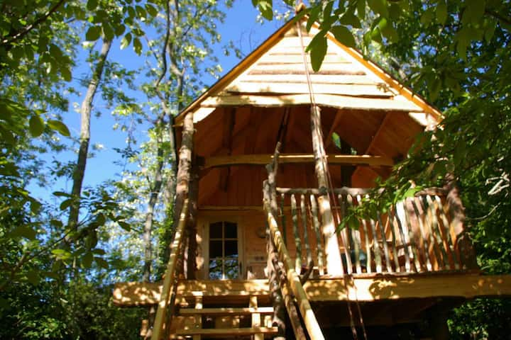 La cabane aux écureuils