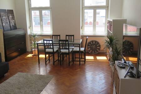 Cozy 65sqm apartment in city center - Viena