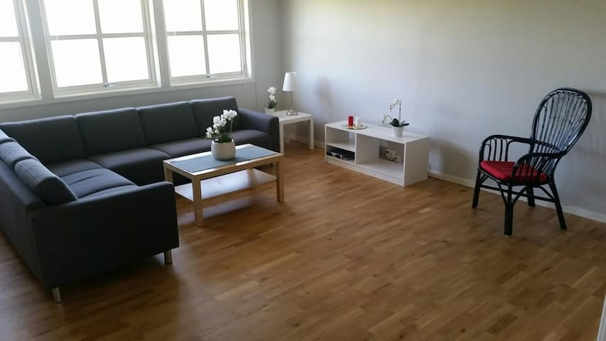 A nice spacious shared apartment at the Ås center