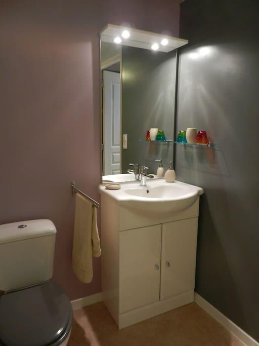 La salle d'eau côté lavabo et toilettes