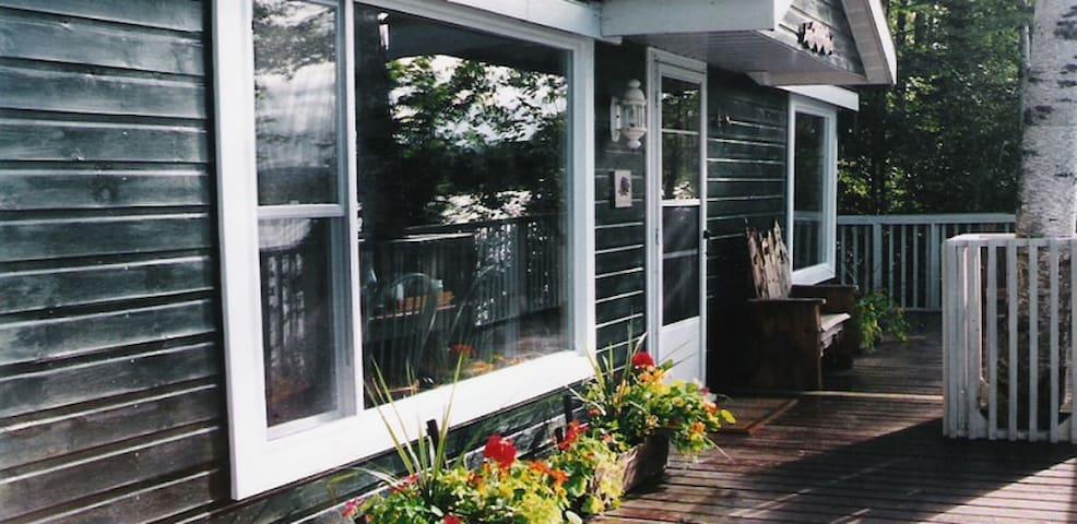 Hillside Cottage on Pickerel Lake - Sundridge - Kabin