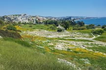 View of Ancient Amathous ruins