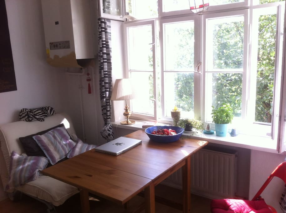 Big nice sunny Kitchen
