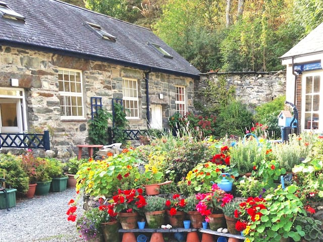Wonderful Country Cottage Snowdonia - Dolgellau - House