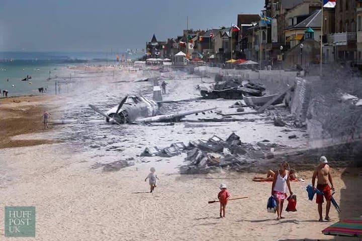Moby Dick - JUNO BEACH - 20 m de la plage