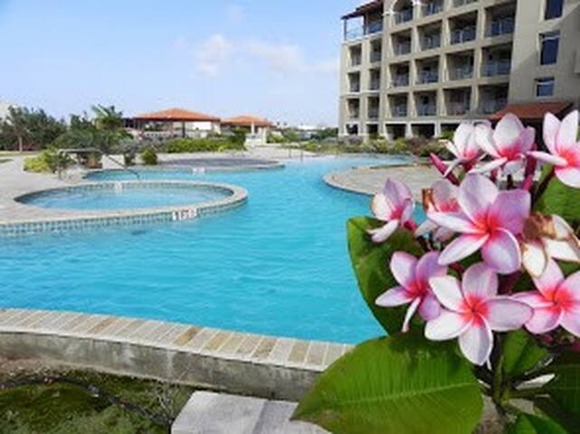 Pool,Beach and Privacy in Aruba - Noord - Apartamento