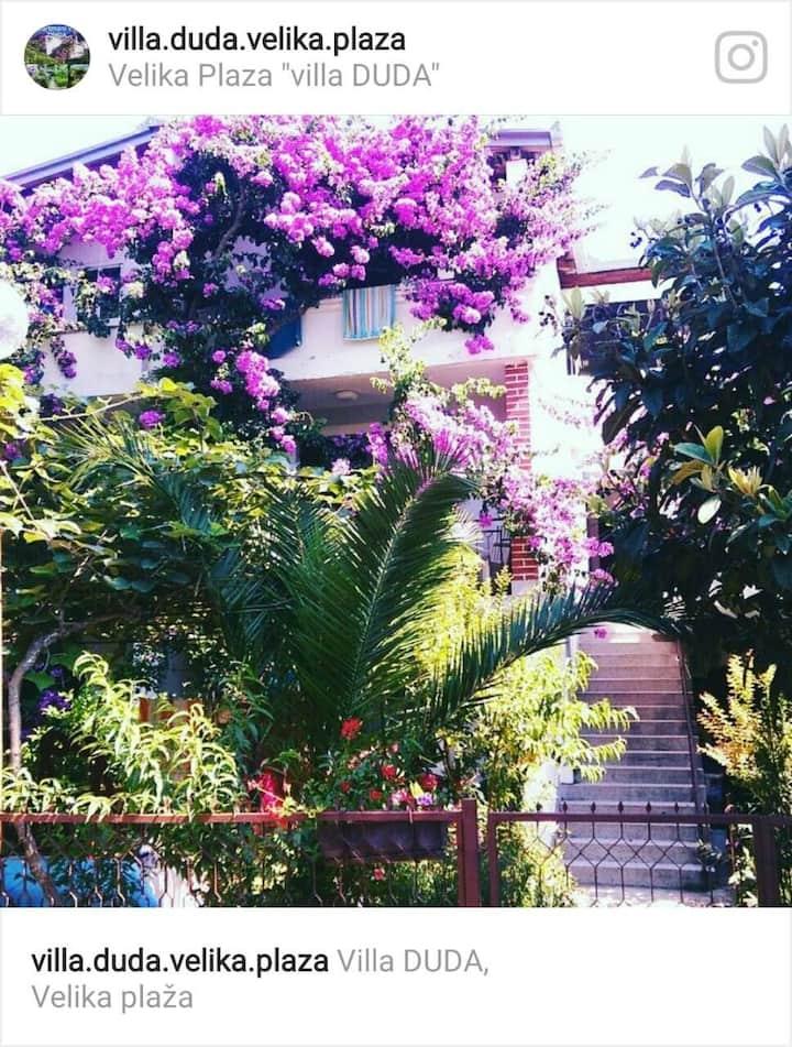Three-bed accommodation, Villa Duda, Velika plaža