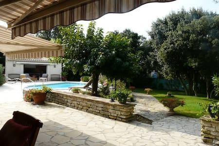 villa avec piscine privée - Montaud
