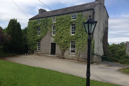 Double bedroom in rural carlow. - Hacketstown - House