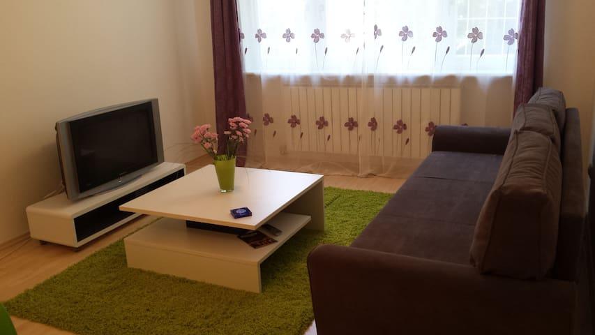 Apartment near the Sarajevo centre