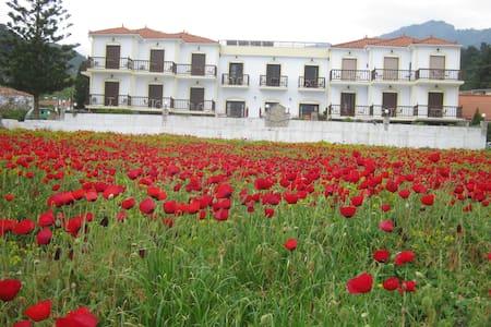 Villa Agios Studios - Samos - Apartment