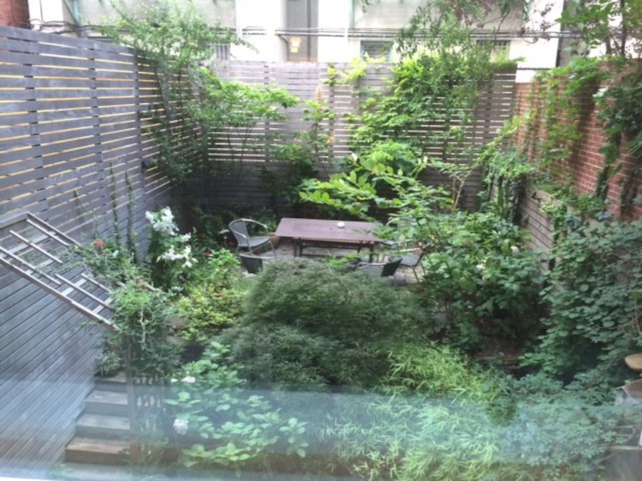 private garden as seen through upstairs window