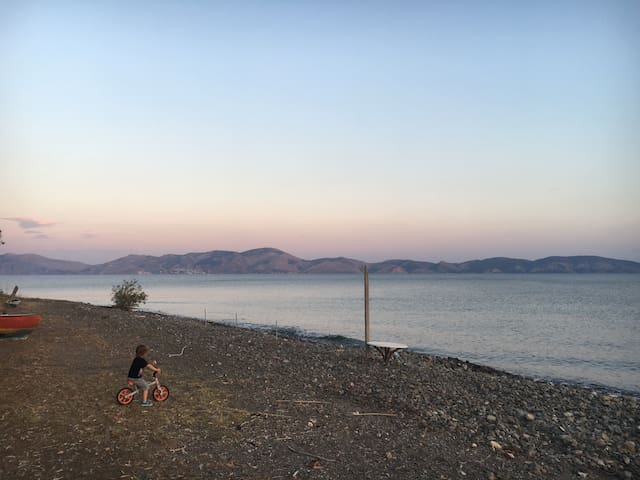The nearest seashore, along Taverna Koulis in Pigadia